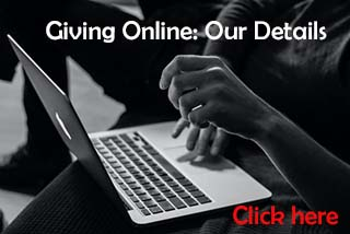 Giving Online- click here